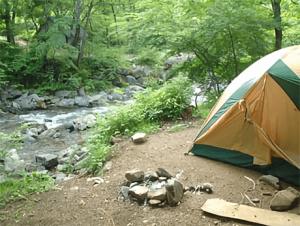 フリーサイト 道志の森キャンプ場